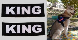 Patch Toppa KING personalizzata per pettorina julius k9