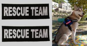 Patch Toppa Rescue Team personalizzata per pettorina julius k9